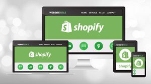 Features Offered by Shopify Themes